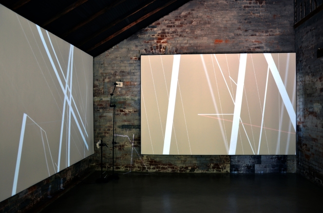 Bojana Ginn, Video Projection, Whitespace Gallery 3