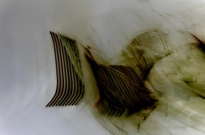 Bojana Ginn, Liquid Lines 4