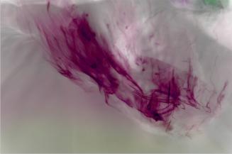 Bojana Ginn, Liquid Lines 2