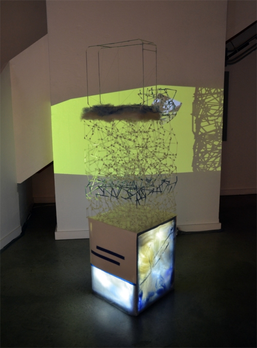 Bojana Ginn Video Art