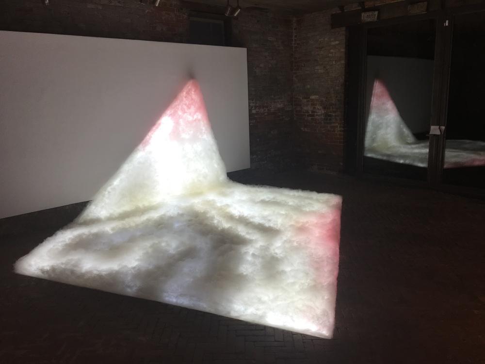 Bojana Ginn, Praising Softness 7, Whitespace Gallery 3